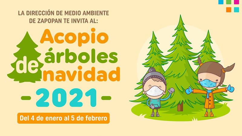 Campaña de acopio de árboles naturales