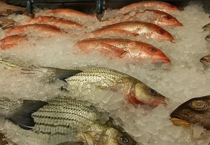 Recomienda DIF Zapopan extremar higiene con productos del mar esta temporada